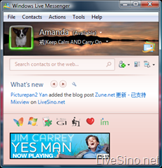 关闭 Windows Live Messenger 2009 RC 中的 Aero 效果