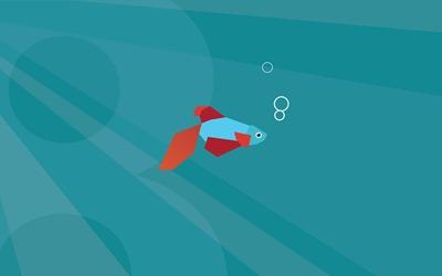 Windows Blue 带来新 Betta 鱼启动画面